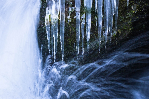 Ice formations on the banks of the Doubs River (France)