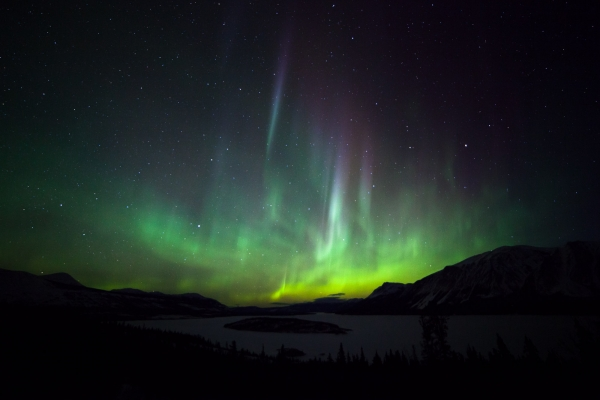 Northern Lights dancing over Bove Island