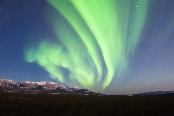 Northern Lights above Miles Canyon