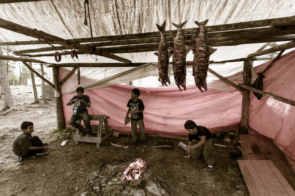 Kids surrounding smoking salmons at a Gwitchin First Nation fish camp