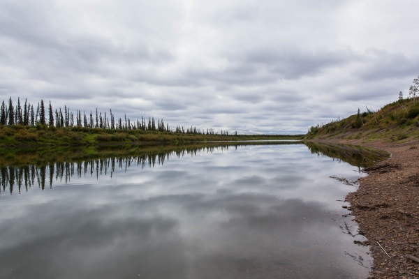 Reflection on the Bell River