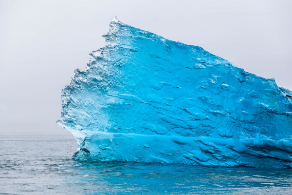 Crystal blue iceberg in Tracy Arm