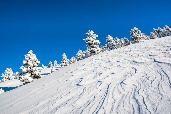 Winter landscape in the Vercors Massif (‎Alps, France)
