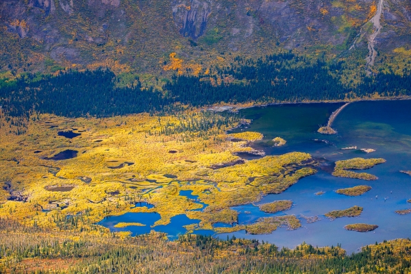Fall colors in Fish Lake (Yukon, Canada)