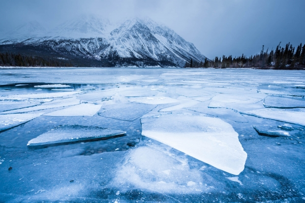 Ice Plates on Kathleen Lake in Kluane National Park (Yukon, Canada)