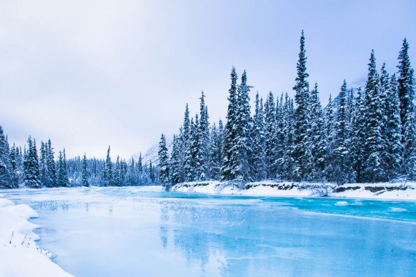 Frozen Wheaton River in the Coast Mountains (Yukon, Canada)