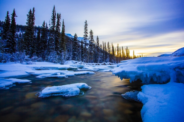 Wheaton River banks in Winter (Yukon, Canada)
