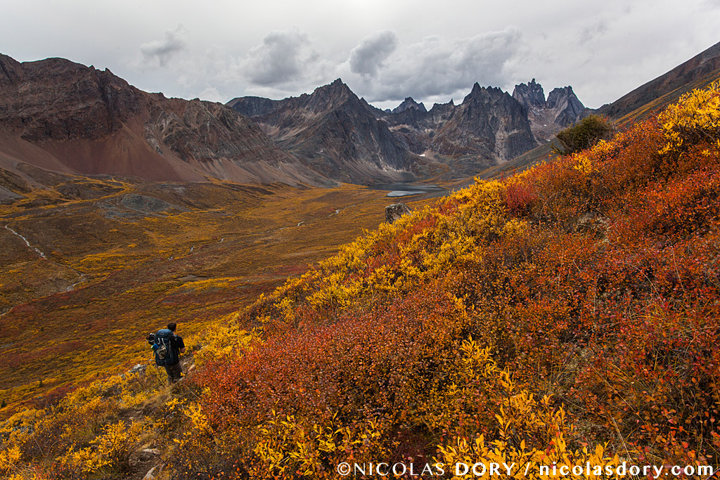 Hiker on the Grizzly Lake Trail