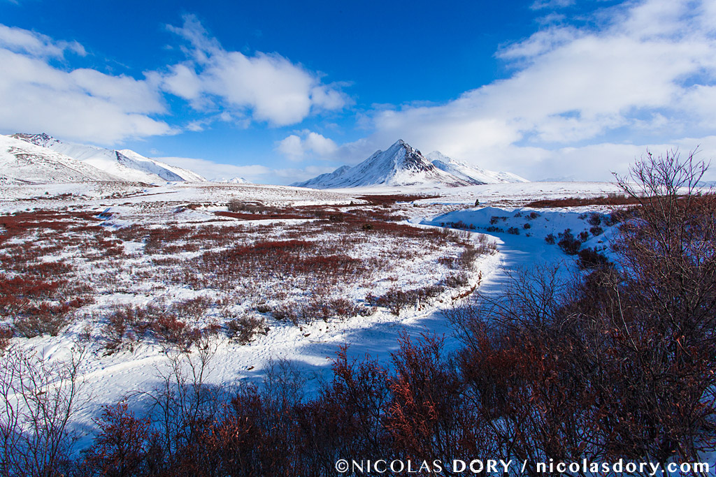 A scenic view of Tombstone Territorial Park in winter